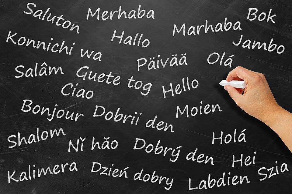 Jezikovna šola Lingula